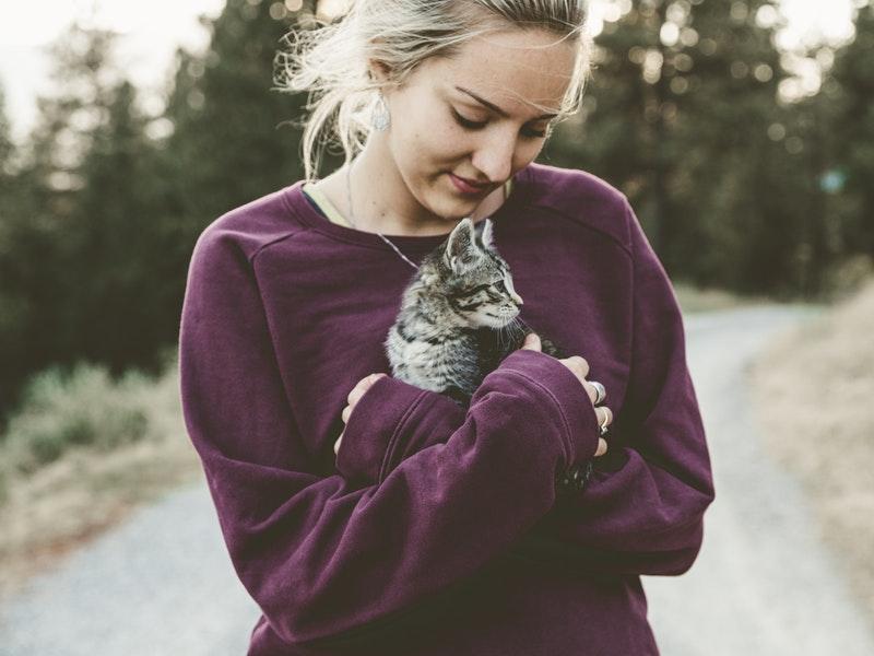Adoptar un gatito